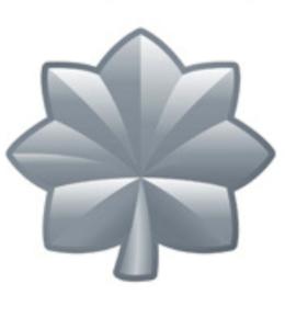 Gray Leaf Symbol